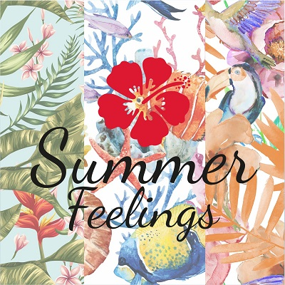 presentazione summer feelings