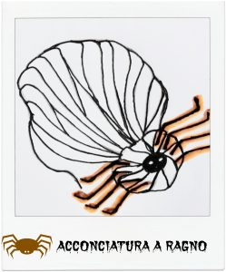 tutorial-capelli_acconciatura-a-ragno